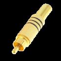 CON117