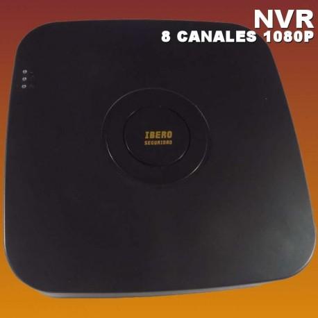 NVR8B-IS