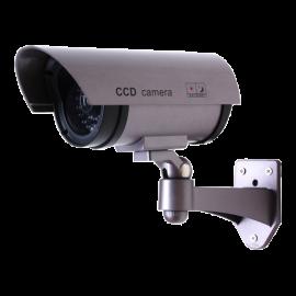 CS809