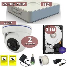 Kit videovigilancia HD-TVI 2 cámaras domo con disco duro de 1 TB especial videovigilancia Avantsec